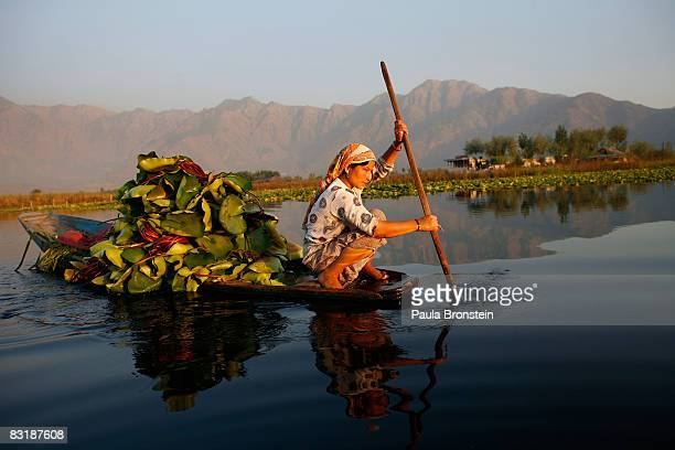 Kashmiri woman paddles along on Dal Lake October 4 2008 in Srinagar Kashmir In the past few months the region's summer captiol has witnessed the...