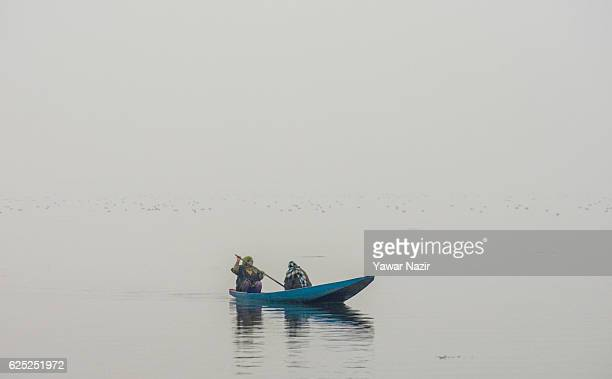 Kashmiri woman rows a boat at the Dal lake during a cold foggy day on November 23 2016 in Srinagar the summer capital of Indian administered Kashmir...