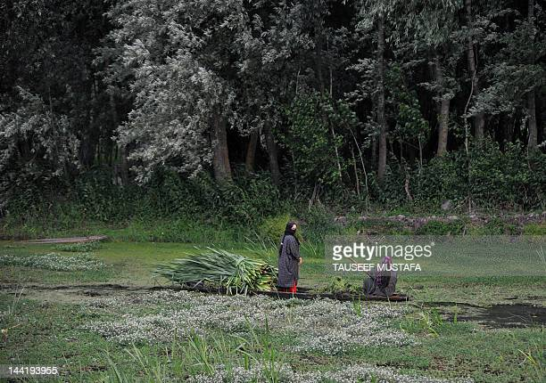 A Kashmiri woman rows a boat in the dal lake carrying grass to feed cattle on a windy and rainy day in Srinagar on May 11 2012 Pakistan said that it...