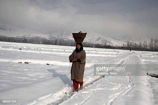 A kashmiri woman walks on a snow covered field on January 1 2014 in Srinagar India Kashmir Valley was cut off from rest of the country for the second...