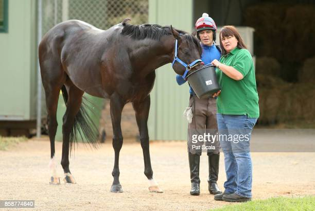 Kaspersky with trackrider Joe Berkely and trainer Jane ChappleHyam after trackwork at Werribee Racecourse on October 08 2017 in Werribee Australia