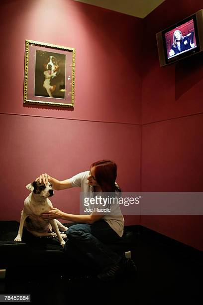 Kat Macenas visits with a dog in the crown jewel suite as she is boarded at Chateau Poochie the luxury hotel for dogs and cats December 13 2007 in...