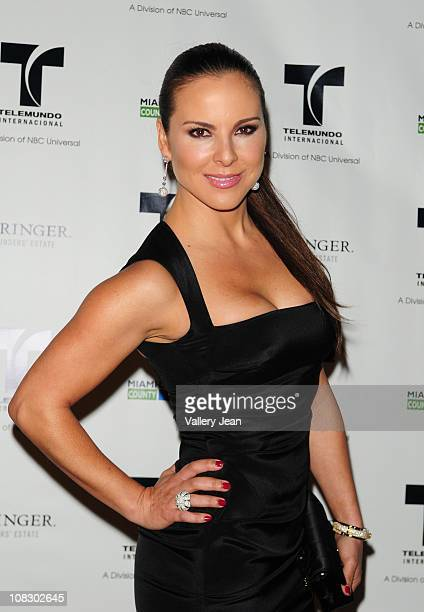 Kate Del Castillo attends Telemundo NATPE party at Vizcaya Museum Gardens on January 24 2011 in Miami Florida