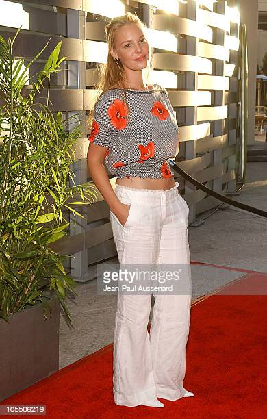 Katherine Heigl during 2004 ABC All Star Summer Party at C2 Cafe in Century City California United States