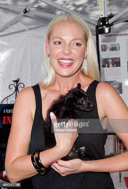 Katherine Heigl holds a rescue puppy at a screening and QA for 'Saved In America' at Regency Theatres on August 15 2015 in Agoura Hills California