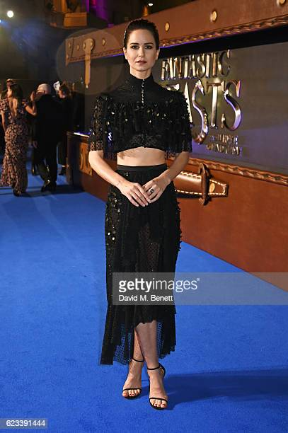 Katherine Waterston attends the European Premiere of 'Fantastic Beasts And Where To Find Them' at Odeon Leicester Square on November 15 2016 in...