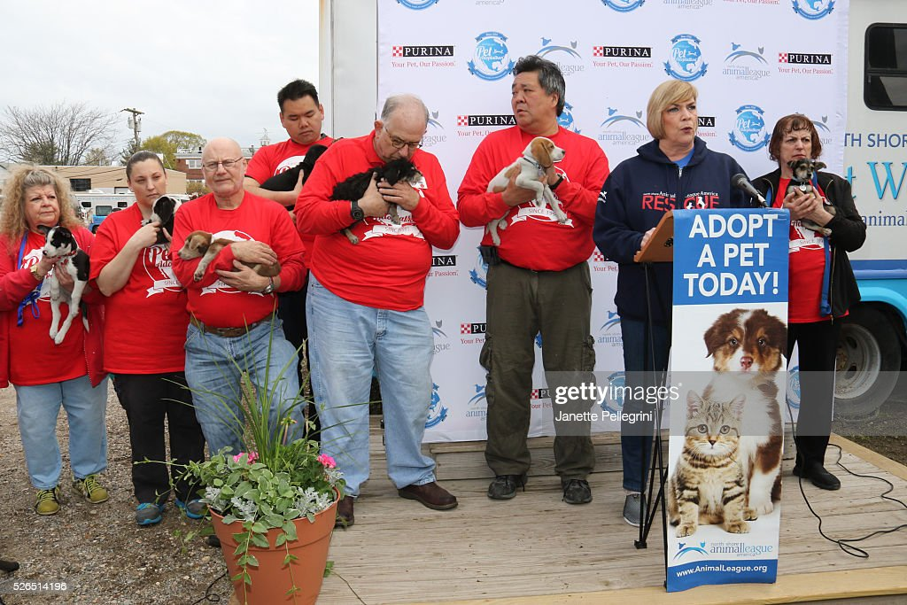 Kathleen Lynn attends the 22nd Annual Global Pet Adoption Event at North Shore Animal League America on April 30, 2016 in Port Washington, New York.
