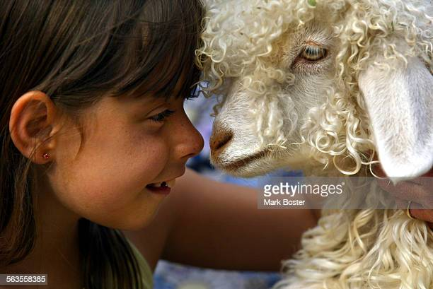 –Katie Stevens Lakewood went nose–to–nose with an Angora goat being held by volunteer Harold Laughlin at the Centennial Farm There is a faithful core...