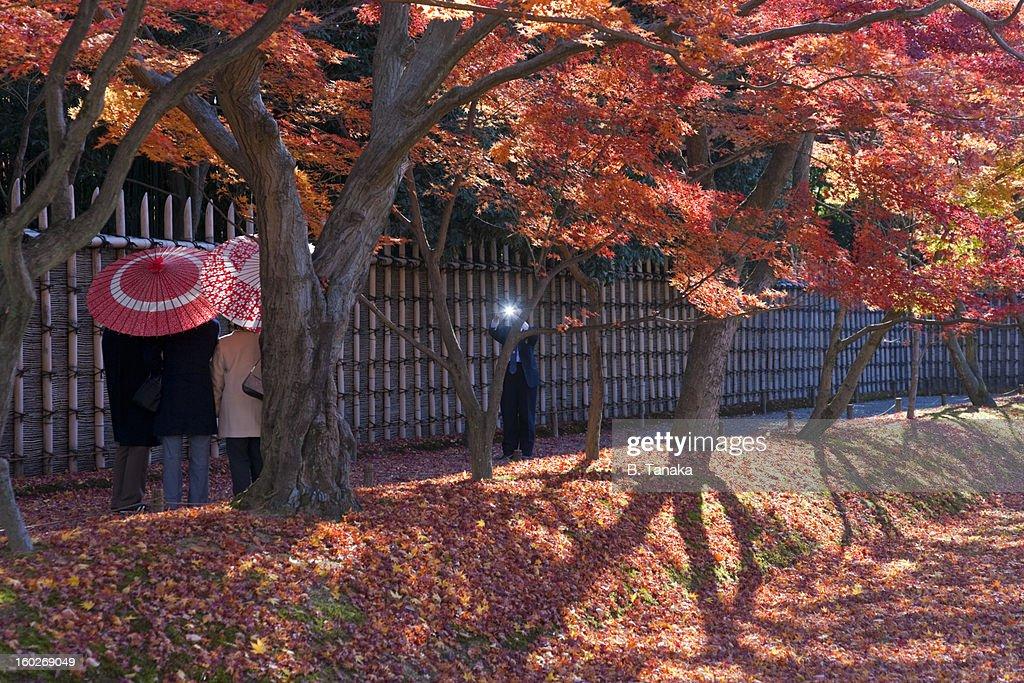 Katsura Imperial Villa, autumn, in Kyoto, Japan : Stock Photo