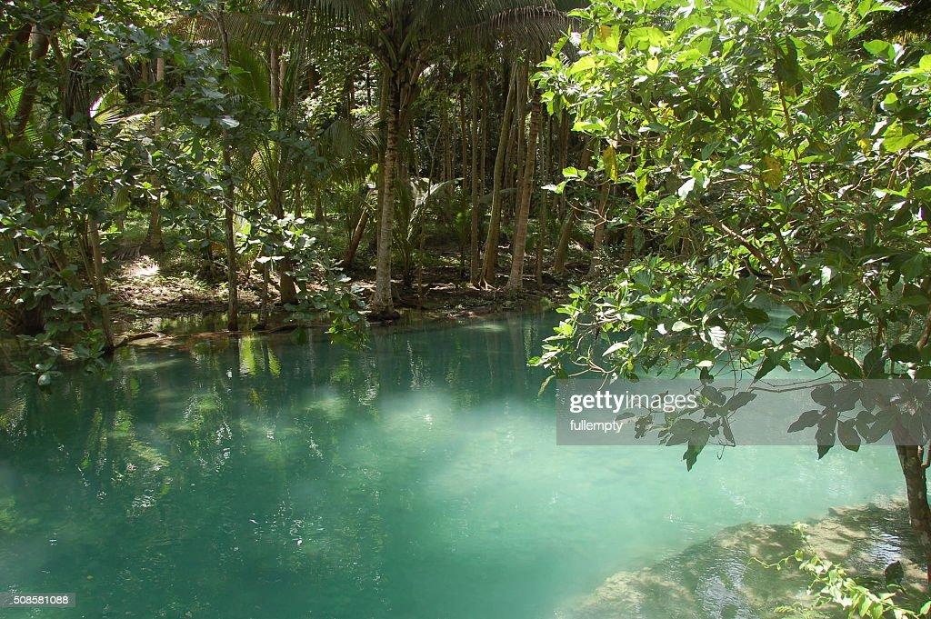 Kawasan river in Cebu, Philippines : Stock Photo