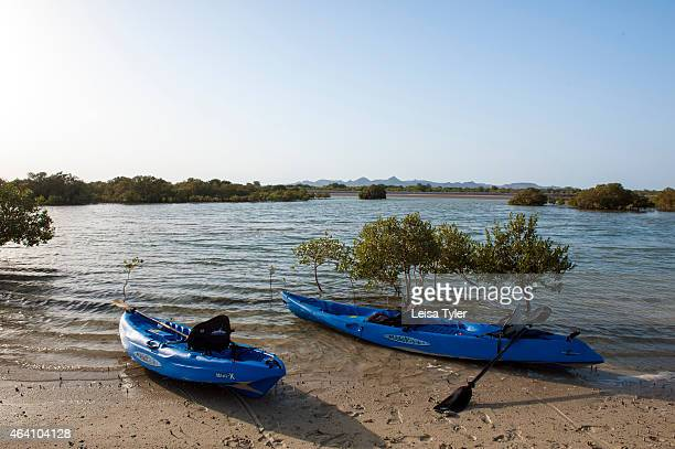 Kayaks in the mangrove forest on Sir Bani Yas an island in the Persian Gulf The once private retreat of the United Arab Emirates founder the former...