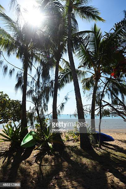 Kayaks sit under palm trees on a beach at Horseshoe Bay in Magnetic Island off the coast of Townsville Queensland Australia on Wednesday Aug 12 2015...