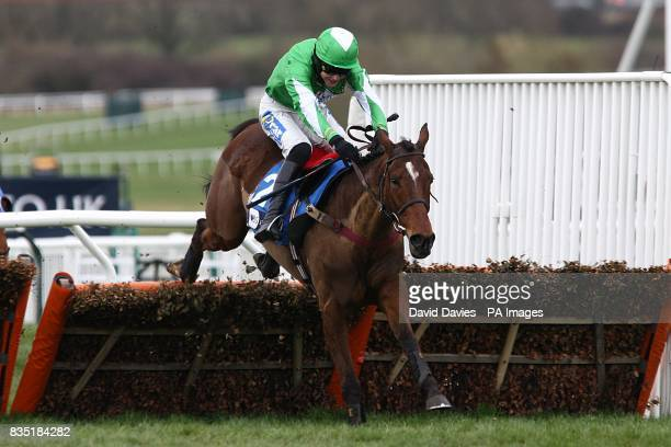 Kayf Aramis ridden by jockey Aidan Coleman jumps the last prior to winning the Pertemps Final