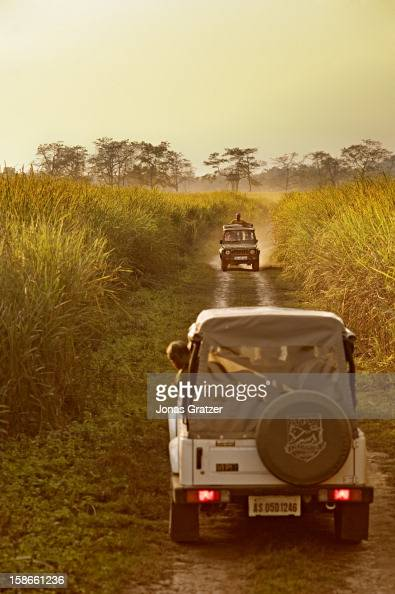 Kaziranga National Park is the biggest tourist attraction in the state of Assam with elephant safaris being the most popular way of seeing the...