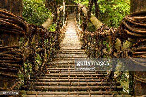 Kazurabashi Vine Bridge