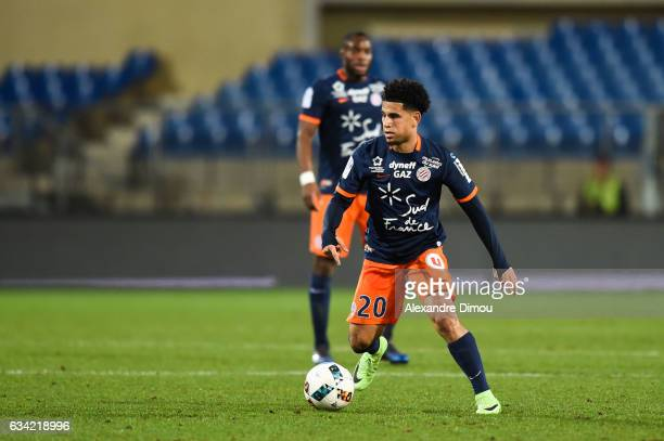 Keagan Dolly of Montpellier during the French Ligue 1 match between Montpellier and Monaco at Stade de la Mosson on February 7 2017 in Montpellier...