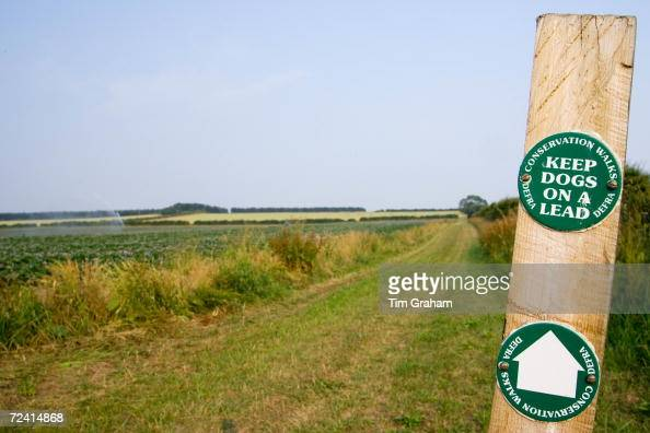 Keep Dogs On A Lead signpost by a DEFRA Conservation Walk near Holkham Norfolk UK