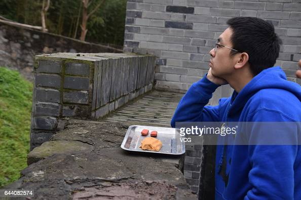 A keeper looks at the USborn giant panda Bao Bao at its new home in Dujiangyan on February 23 2017 in Chengdu Sichuan Province of China 3yearold...