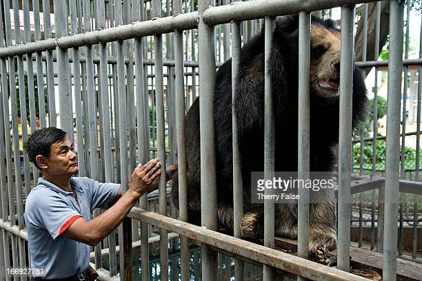 A keeper pats an Asiatic Black Bear kept in a cage in a private Thai school Ten years ago the school agreed to take care of a few bears bred for...