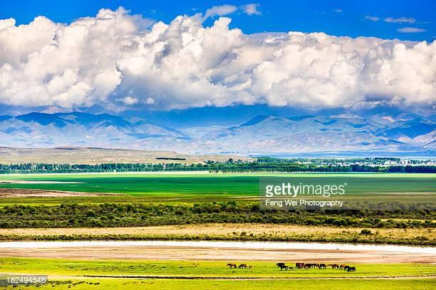 Keerkante Grassland, Zhaosu, Xinjiang China