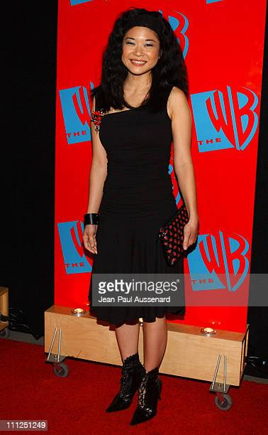 Keiko Agena during The WB Network's 2004 All Star Party at Hollywood Highland in Hollywood California United States