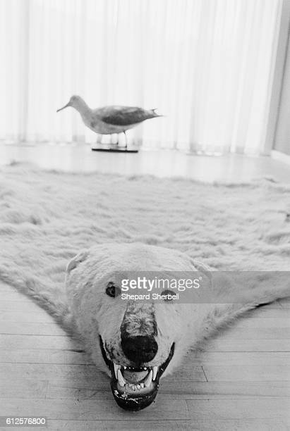 Keith Moon's polar bear rug