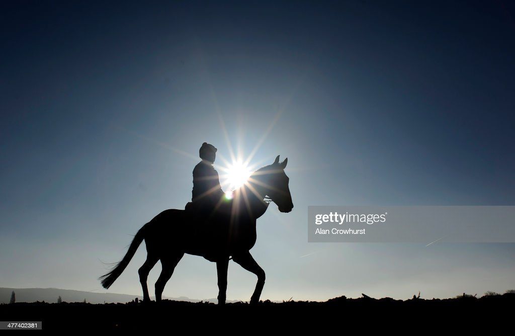 Keith Schous riding Trifolium on the gallops at Cheltenham racecourse on March 09, 2014 in Cheltenham, England.