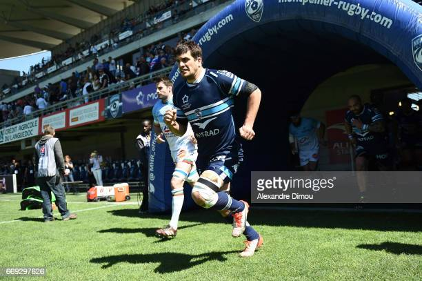 Kelian Galletier of Montpellier during the Top 14 match between Montpellier and Bayonne on April 16 2017 in Montpellier France