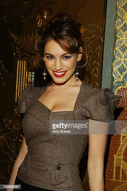 Kelly Brook during 'BloodRayne' Los Angeles Premiere Red Carpet at Mann's Chinese Theater in Hollywood California United States