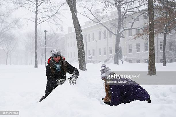 Kelly Steeves left and Ellie LasaterGuttmann both freshmen at Harvard make an igloo in Harvard Yard on January 27 2015 in Cambridge Massachusetts...
