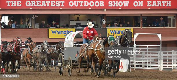 Kelly Sutherland from Grande Prairie AB during the GMC Rangeland Derby's nine chuckwagon races at the Calgary Stampede 2016 On Thursday 14 July 2016...