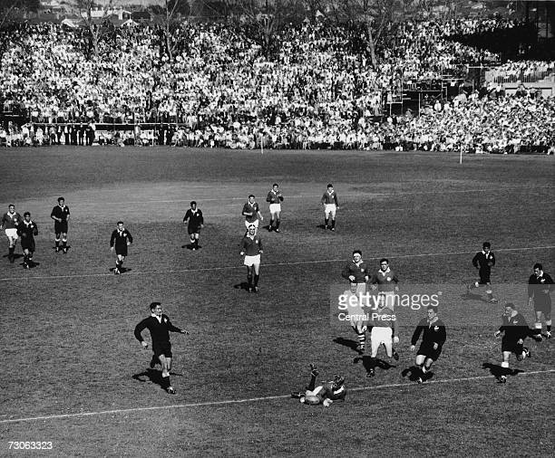 Ken Scotland of the British Lions crosses the line but loses the ball at the critical moment resulting in his try being disallowed during a match...
