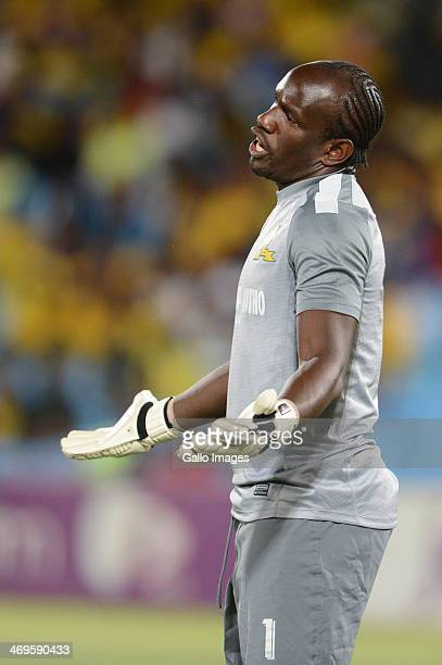 Kennedy Mweene during the Absa Premiership match between Mamelodi Sundowns and Ajax Cape Town at Loftus Stadium on February 15 2014 in Pretoria South...