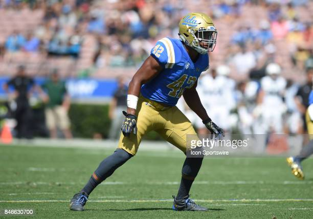 Kenny Young watches the play develop during a college football game between the Hawai'i Rainbow Warriors and the UCLA Bruins on September 09 2017 at...