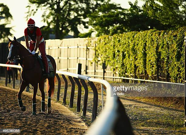 Kentucky Derby and Preakness winner California Chrome with exercise rider Willie Delgado up walks on the main track at Belmont Park on June 2 2014 in...