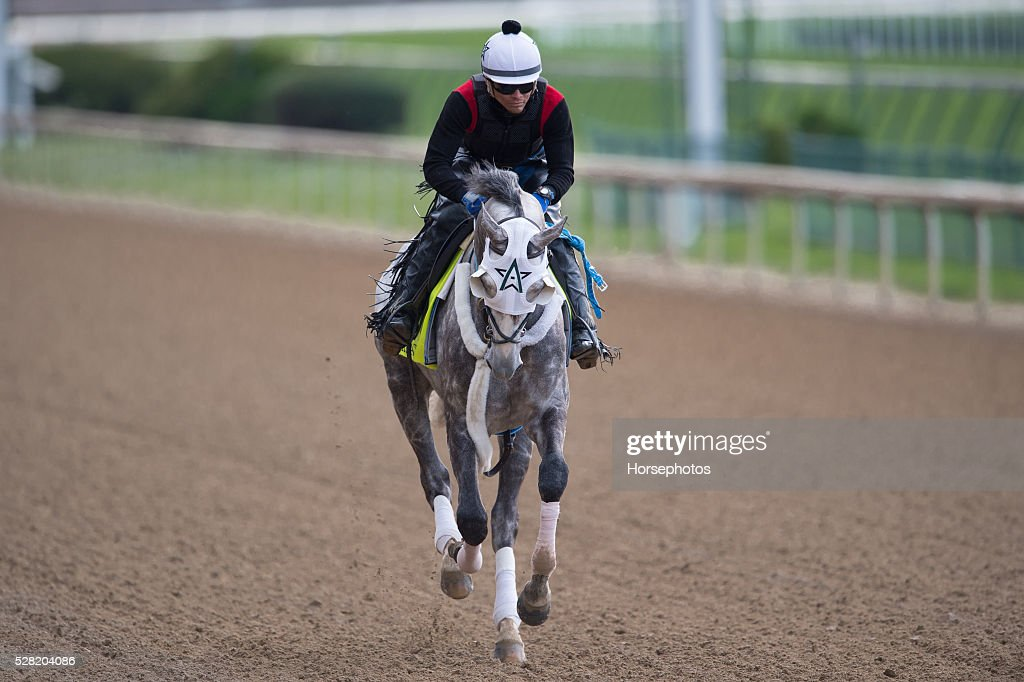 Kentucky Derby contender Creator gallops at Churchill Downs Race Track on May 04, 2016 in Louisville, Kentucky.