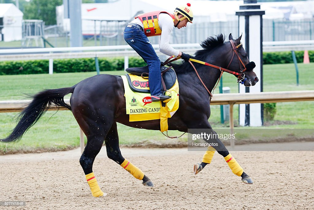 Kentucky Derby contender Danzing Candy gallops during workouts at Churchill Downs Race Track on May 3, 2016 at Churchill Downs in Louisville, Kentucky.
