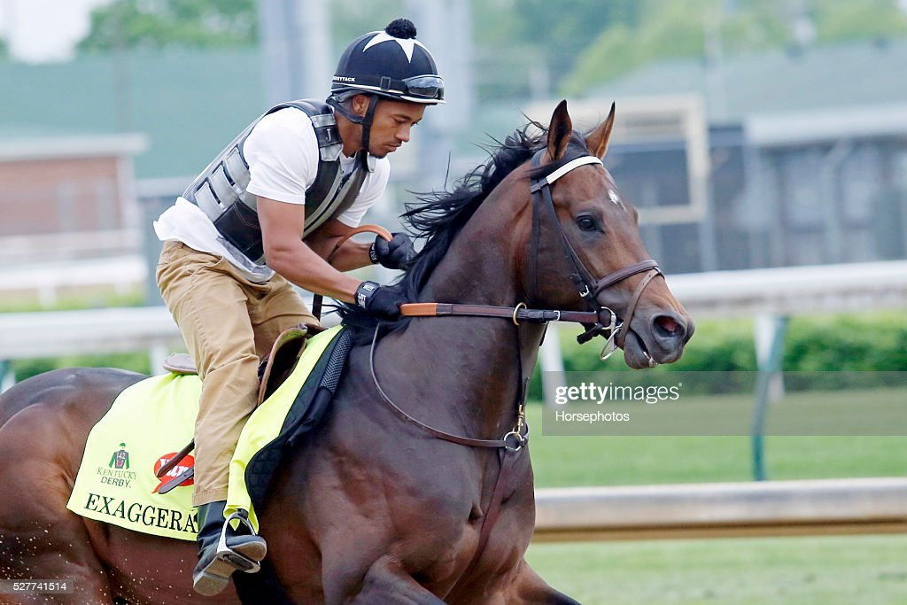 Kentucky Derby contender Exaggerator gallops during workouts at Churchill Downs Race Track on May 3, 2016 at Churchill Downs in Louisville, Kentucky.