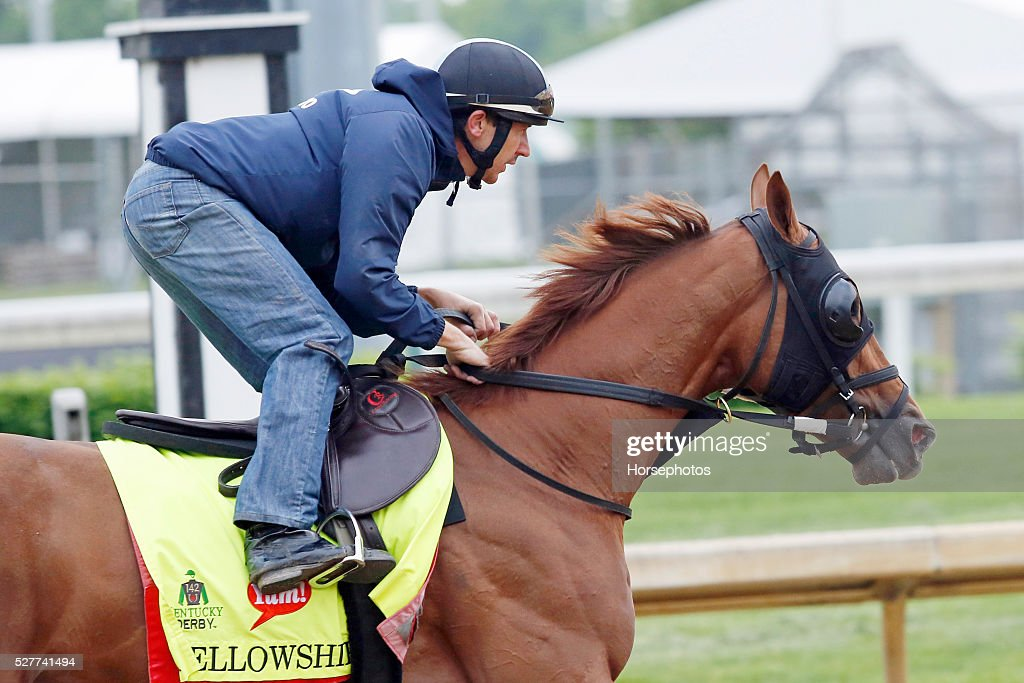 Kentucky Derby contender Fellowship gallops during workouts at Churchill Downs Race Track on May 3, 2016 at Churchill Downs in Louisville, Kentucky.