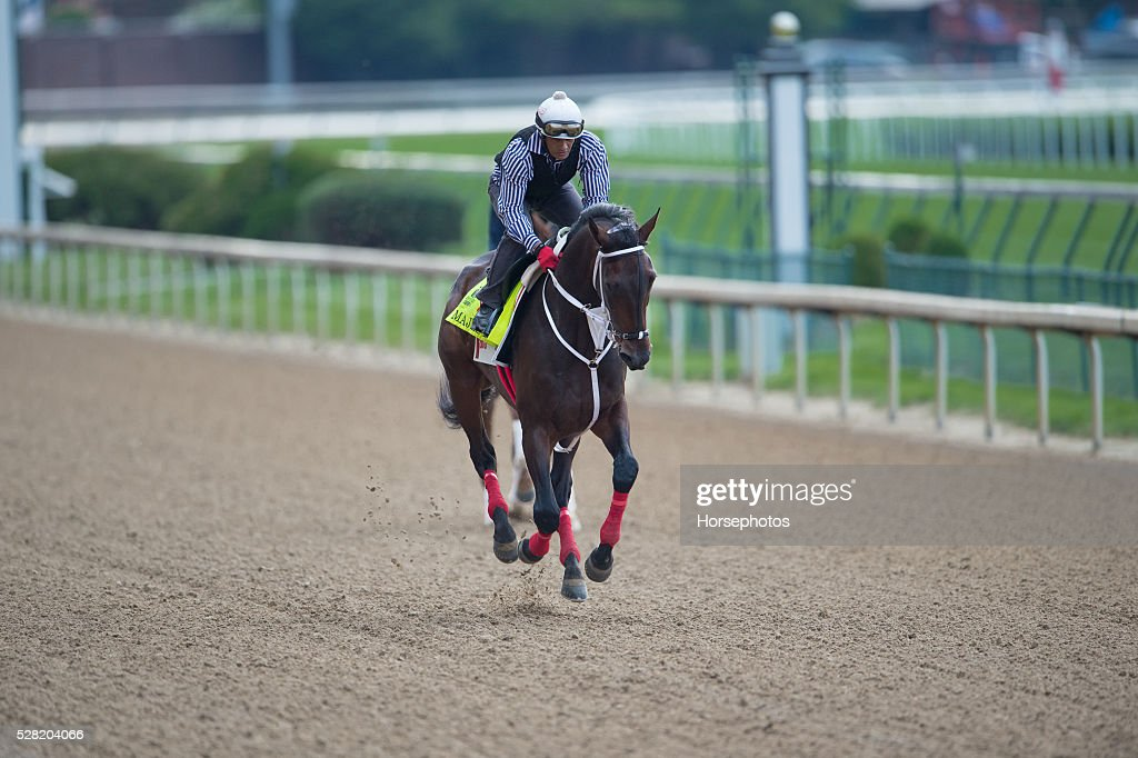 Kentucky Derby contender Majesto gallops at Churchill Downs Race Track on May 04, 2016 in Louisville, Kentucky.