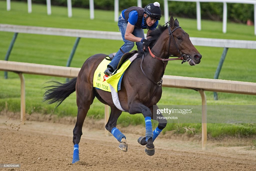 Kentucky Derby contender Mo Tom gallops at Churchill Downs Race Track on May 04, 2016 in Louisville, Kentucky.