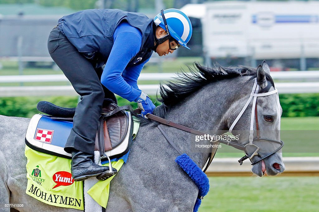 Kentucky Derby contender Mohaymen gallops during workouts at Churchill Downs Race Track on May 3, 2016 at Churchill Downs in Louisville, Kentucky.
