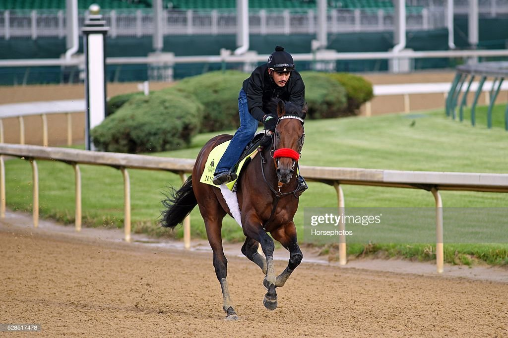Kentucky Derby contender Nyquist gallops at Churchill Downs Race Track on May 5, 2016 at Churchill Downs, Louisville