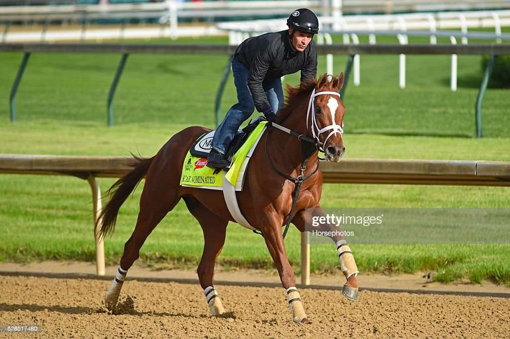 Kentucky Derby contender Oscar Nominated gallops at Churchill Downs Race Track on May 5, 2016 at Churchill Downs, Louisville