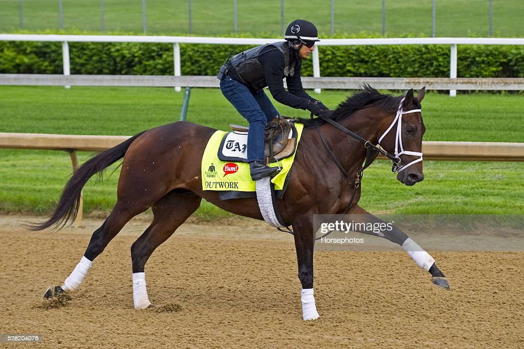 Kentucky Derby contender Outwork gallops at Churchill Downs Race Track on May 04, 2016 in Louisville, Kentucky.