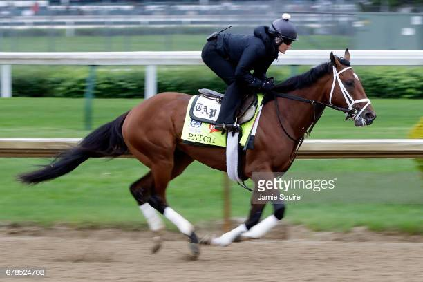 Kentucky Derby entrant Patch works out ahead of the 143rd Kentucky Derby at Churchill Downs on May 4 2017 in Louisville Kentucky