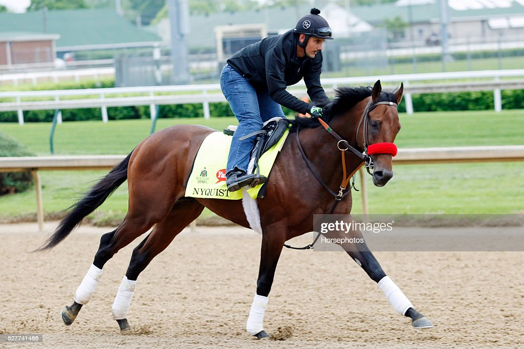 Kentucky Derby favorite Nyqvist gallops during workouts at Churchill Downs Race Track on May 3, 2016 at Churchill Downs in Louisville, Kentucky.