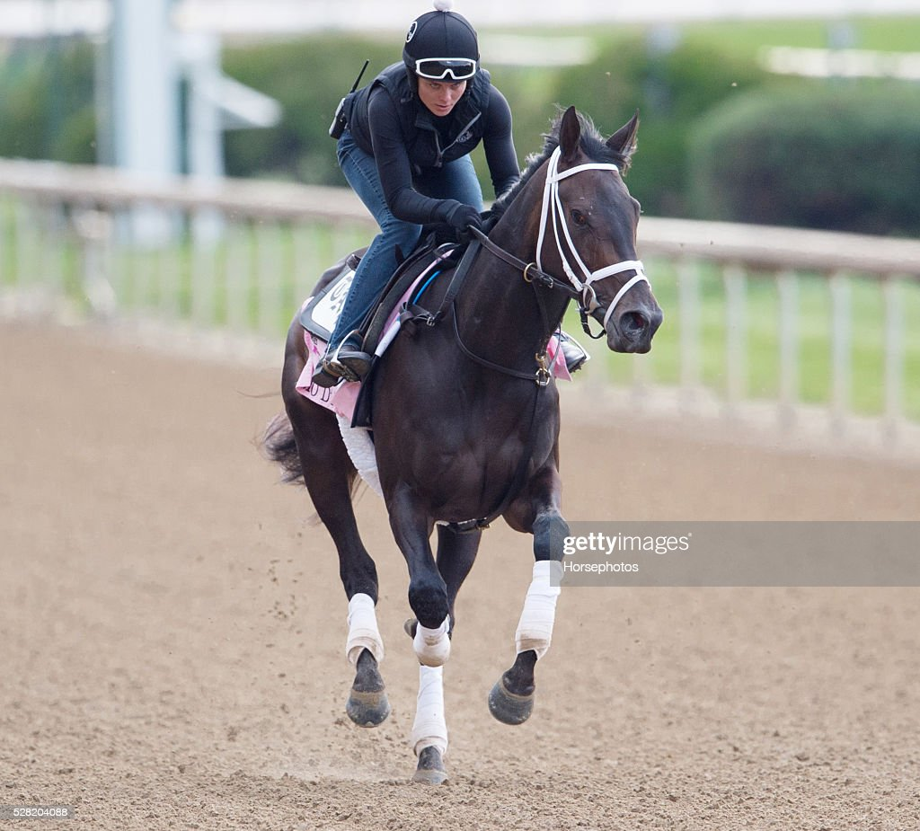 Kentucky Oaks contender Mo Damour gallops at Churchill Downs Race Track on May 04, 2016 in Louisville, Kentucky.
