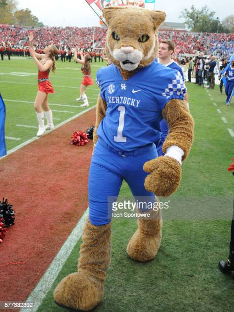 Kentucky Wildcats Mascot Scratch before the game between the Kentucky Wildcats and the Georgia Bulldogs on November 18 at Sanford Stadium in Athens GA