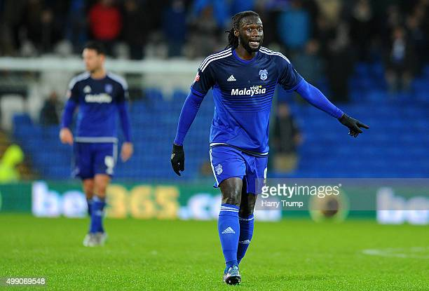 Kenwyne Jones of Cardiff City during the Sky Bet Championship match between Cardiff City and Burnley at the Cardiff City Stadium on November 28 2015...